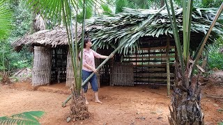 Primitive Technology: Building a hut for cooking (kitchen-hut) Primitive-Hut