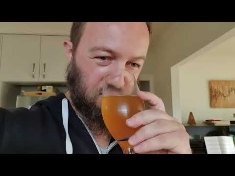 Taste Test Of Homemade Ginger Beer Fermented With Lactobasillus