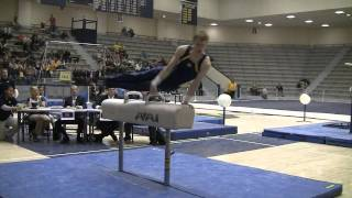 Maize and Blue - Pommel Horse