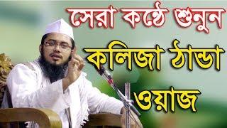 সেরা কন্ঠে শুনুন কলিজা ঠান্ডা করা ওয়াজ Mufti Mahmudul Hasan Kasemi bangla waz 2017