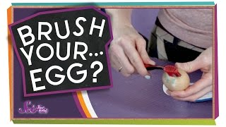 Remember to Brush Your...Egg?