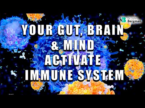 How Your Gut, Brain & Mind Activate Your Immune System