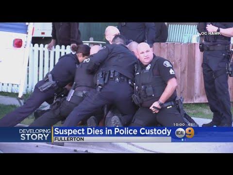 Suspect Dies In Police Custody – Los Angeles Alerts