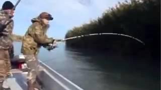 Рыбалка в Казахстане  Амур 16 кг  Смотреть интересное видео о Рыбалке