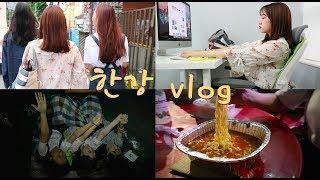 Vlog #2 개강 전 한강 브이로그, 마지막 발악
