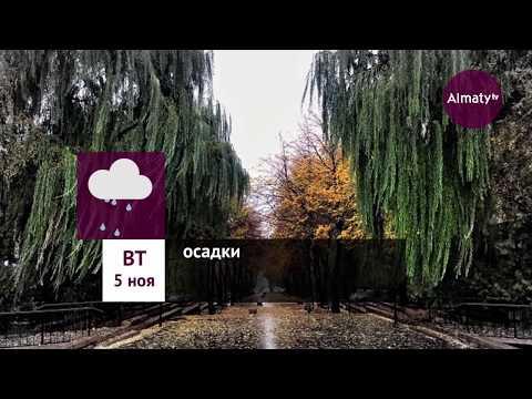 Погода в Алматы с 4 по 10 ноября 2019