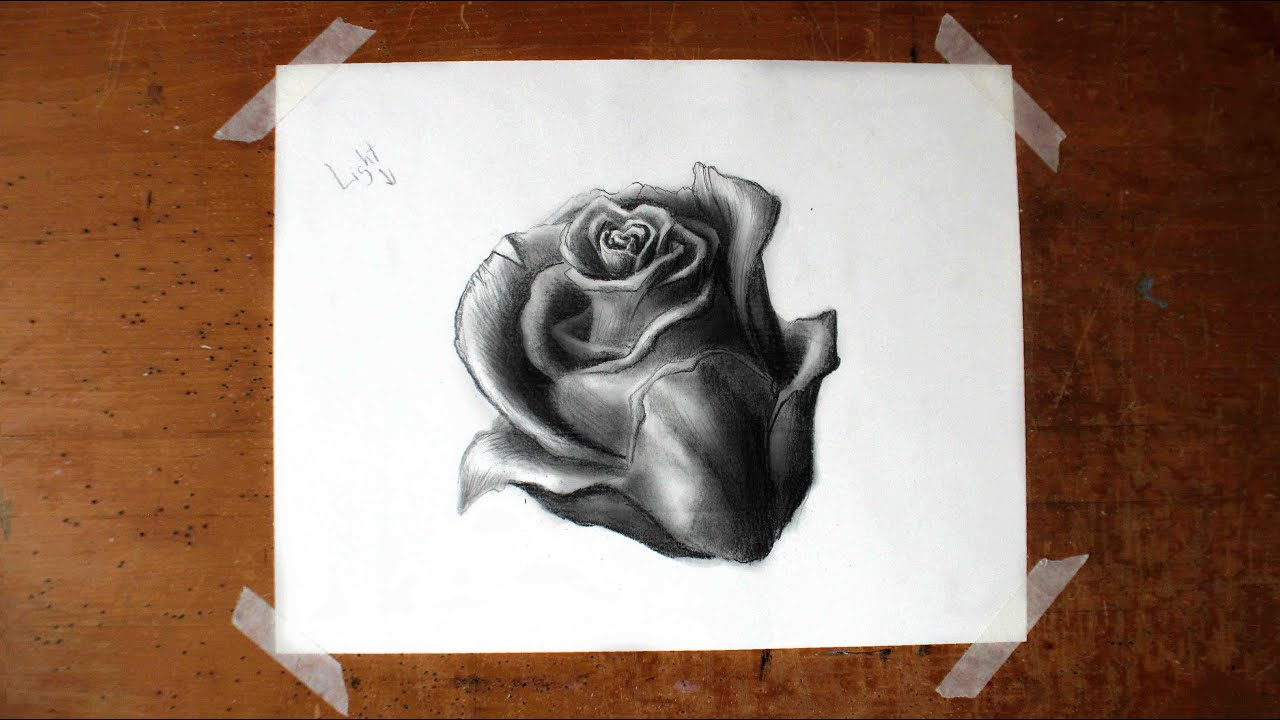 How to Draw a Realistic Rose (A Basic Flower Tutorial for ...