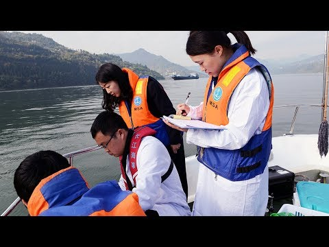 National agency tackles ecological challenges facing Yangtze River