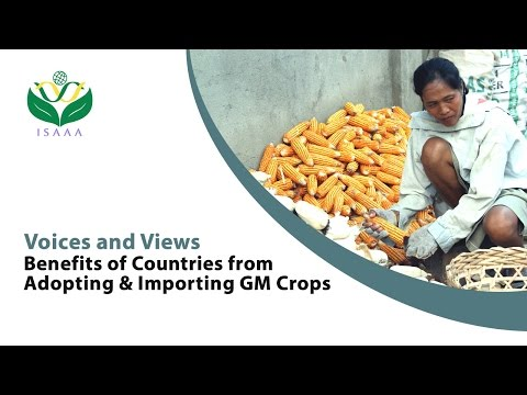 Benefits of Countries from Adopting and Importing GM Crops