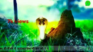 Naagin 3 whatsapp status videos naagin new status [ naagin3 videos]