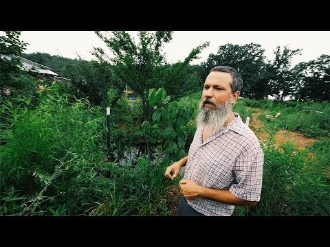 His Permaculture Garden Needs ONLY 2 Days of Work