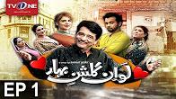 Love In Gulshan e Bihar - Episode 1 - Soap - Full HD - TV One - Drama