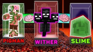 Minecraft - PIGMAN vs WITHER vs SLIME : BRAIN EXCHANGE in NETHER! NOOB TRANSFORMATION in MOBS