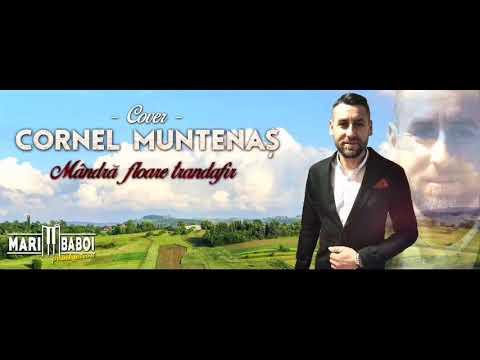 Cornel Muntenaș -