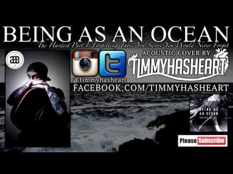 Being As An Ocean - The Hardest Part Is Forgetting Those You Swore You'd Never Forget ACOUSTIC