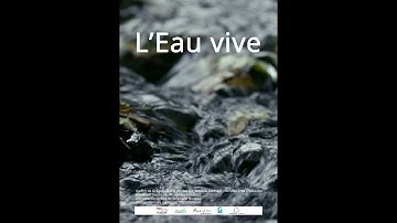 L'eau vive