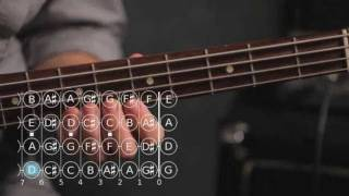 How to Play a B Minor Scale | Bass Guitar
