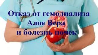 Отказ от гемодиализа  Алое Вера и болезнь почек