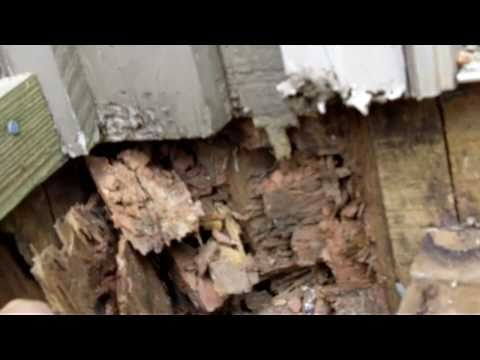 How to fix Termite Damage in homes 770-889-0954