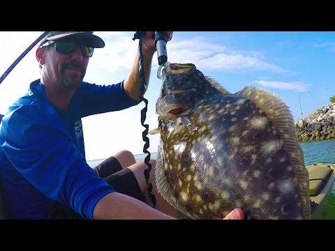 Chesapeake Bay Flounder Limit!