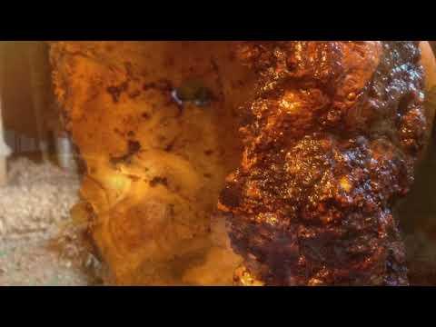 Woodturning ,Chunky Monkey, Burr Maple