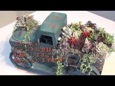 多肉植物の寄植え~ブリキの車にデコレーション♪~Succulent Plants Arrangement♪