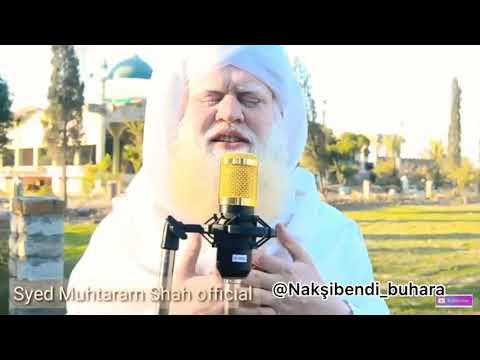 Peygamber efendimiz soyundan seyyid şah bacna k.s