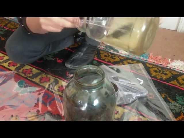 Как приготовить варёную грудинку в домашних условиях 3