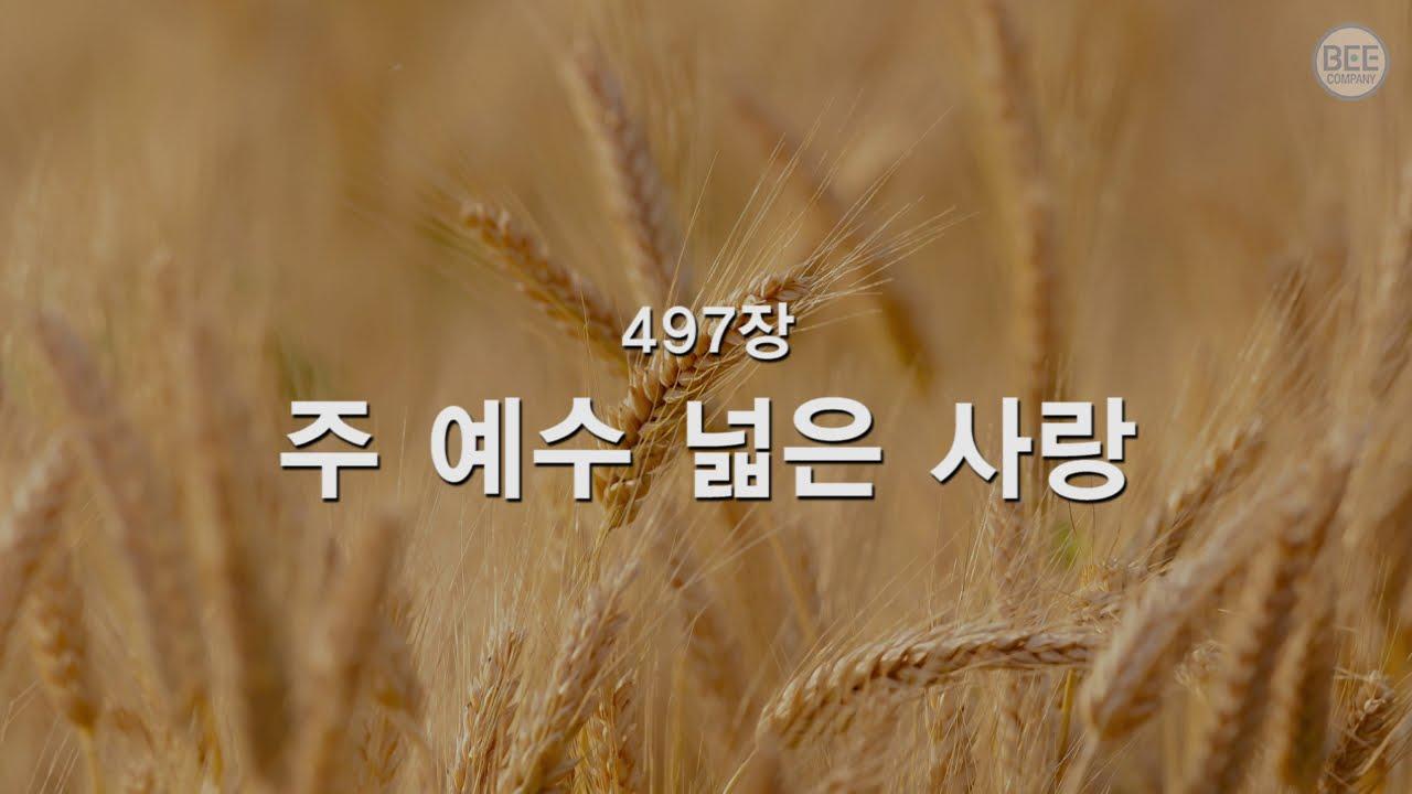 Download [새찬송가] 497장 주 예수 넓은 사랑