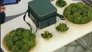 видео Польза и вред брокколи