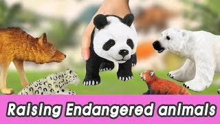 [EN] #68 Endangered animals meet extinct animals, kids education, Collecta figureㅣCoCosToy thumbnail