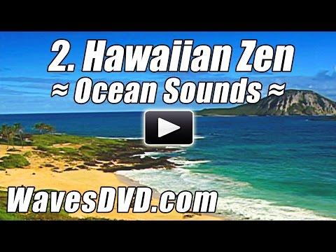 2 - HAWAIIAN ZEN - WAVES DVD Virtual Vacations Nature Videos relaxing ocean sounds relax best beach