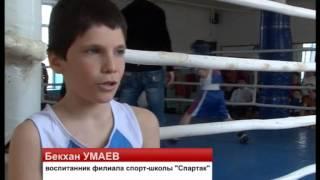 Турнир по боксу молодых спортсменов 2000 2005 годов рождения ТВ Махачкала События