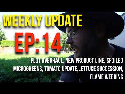 WEEKLY UPDATES - EP14 - JUNE 13-18