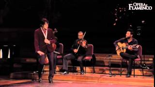 Opera y Flamenco - What we do (08)...