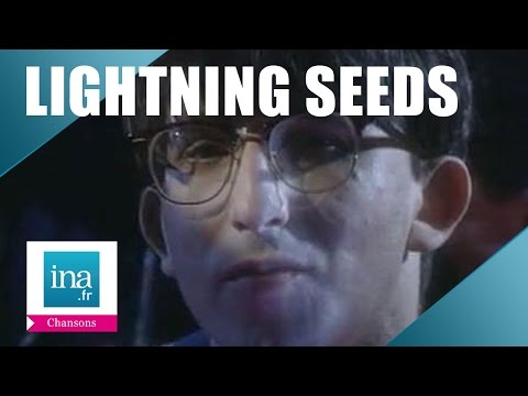 "Lightning Seeds ""Pure"" (live officiel) 