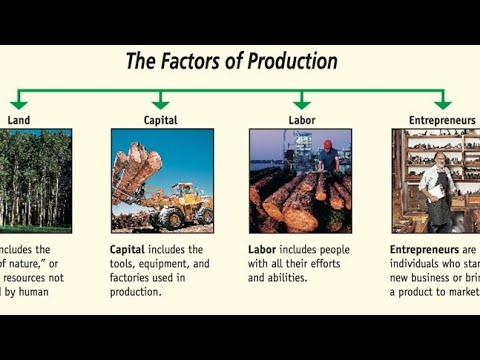 discuss whether it is best to use all factors of production as fully as possible Use any of the tools discussed in the course to define and describe them with as much demographic and psychographic detail as possible you should target at least two (2) market segments 3.