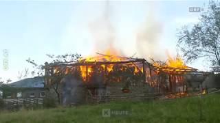 Stall niedergebrannt, Stiere gerettet ORF Kärnten heute