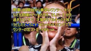 「総合格闘技・RIZIN」(7月30日、さいたまスーパーアリーナ)