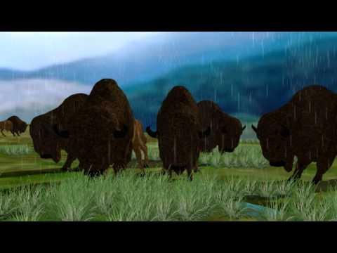 Navajo- -Cry For Rain, part 2