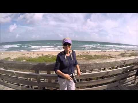 Palm Beach Visit