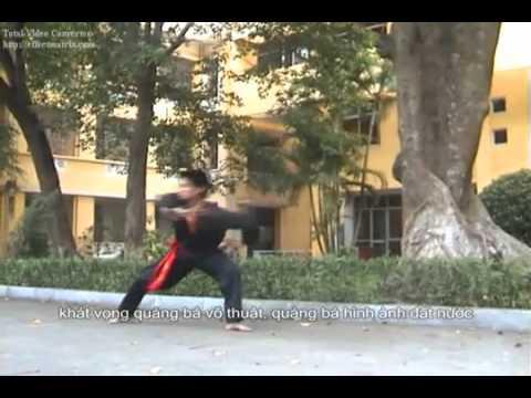 kung fu Hmoob nyab laj.flv