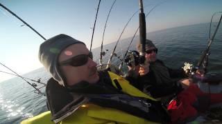 Salmon trolling Baltic Sea 2015: salmon 13 kg _ part 2