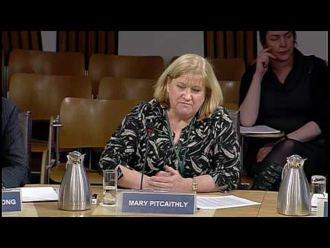 Local Government and Communities Committee – Scottish Parliament: 18th January 2017
