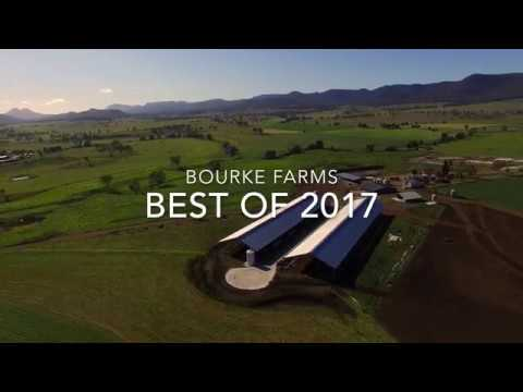 Dairy Farming in Australia - Bourke Farms