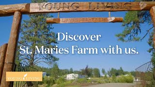 Discover the St. Maries Farm | Young Living Essential Oils