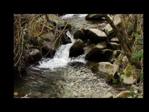 Canto del servo pastore - Fabrizio de André