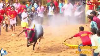 Kombu Vacha Singamda   Official Lyric Video    G V Prakash Kumar, jellikattu vedios and songs