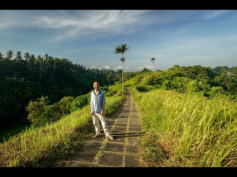 Highlights of Ubud, Bali
