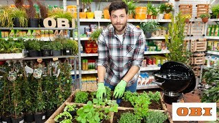Come coltivare un orto aromatico